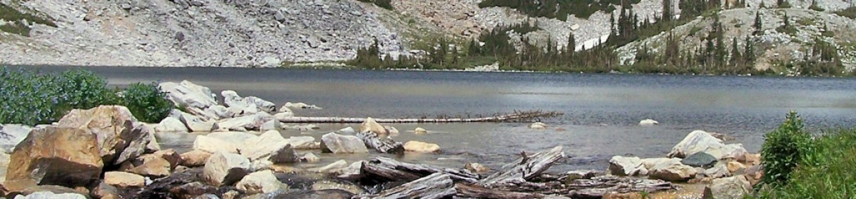 Rocky Mountain Region Disaster Mental Health Institute Press